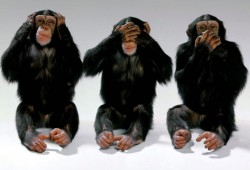 Three chimps - hear no evil, see no evil, speak no evil